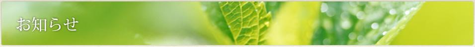 グループホーム伏見・羽束師陽風荘のホームページを開設しました